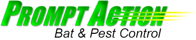 Rice Lake Pest Control Services
